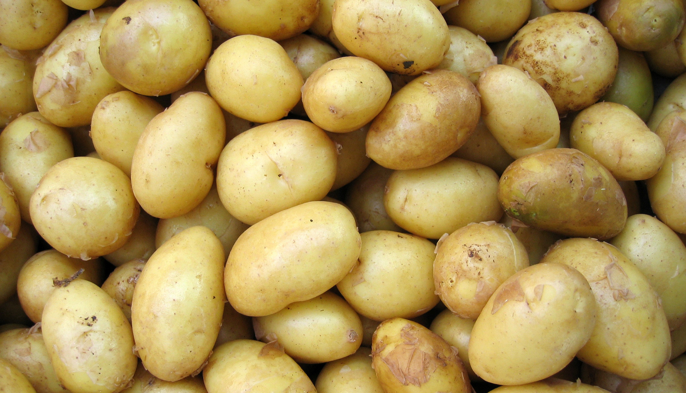 HerrWeber Kartoffeln Rezept